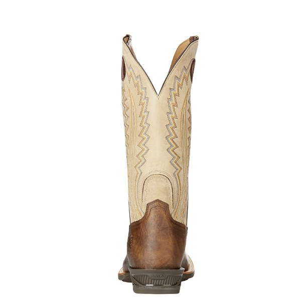 Ariat Boots Catalyst Plus