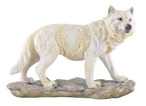 Stehender Weisser Wolf